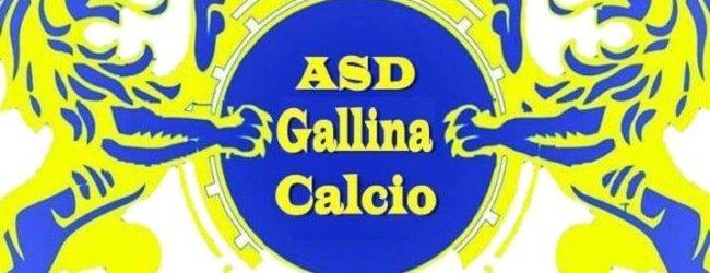 Il ritorno di un club storico: bentornato Gallina Calcio