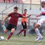Reggina-Cosenza 2016/2017: Cane